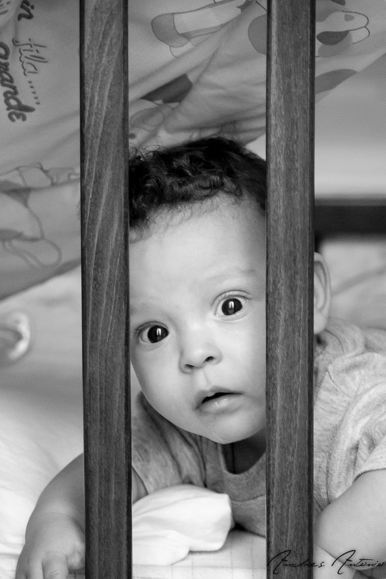 Photograph my little baby by Andres Antonio on 500px