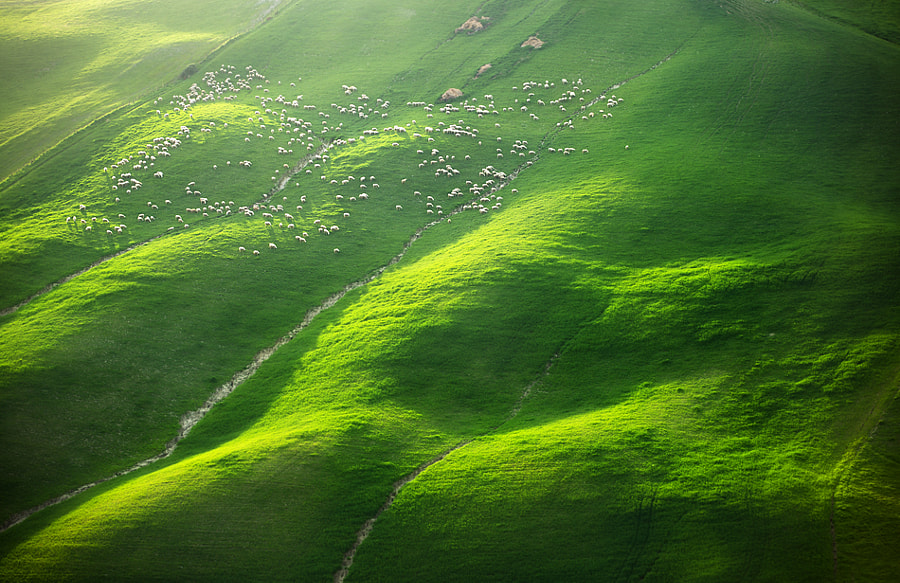 Photograph Over 400 by Marcin Sobas on 500px