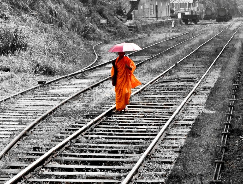 Photograph Track by Harsha Goonawardana on 500px