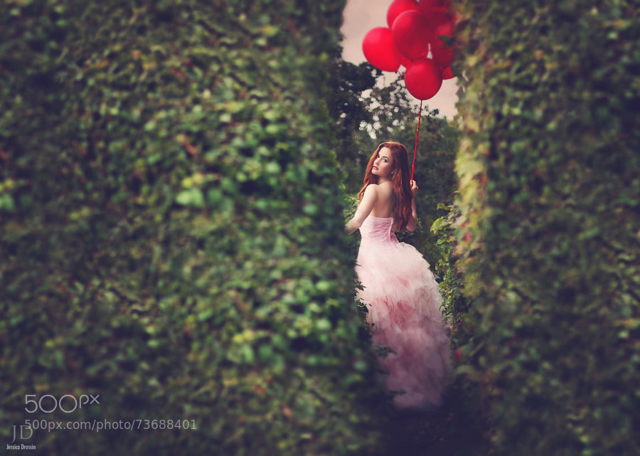 Photograph The Maze by Jessica Drossin on 500px