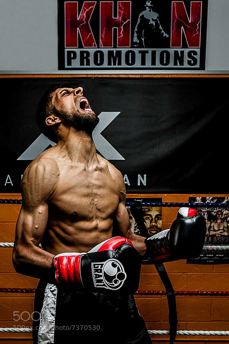 Photograph Boxer Angst by Steve Bryson on 500px