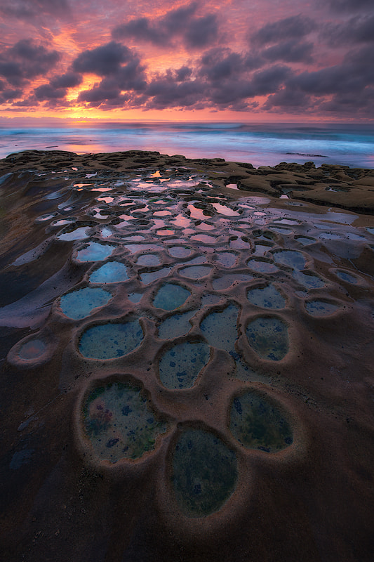 a winter moment (hospitals reef, la jolla) by Max Vuong on 500px.com