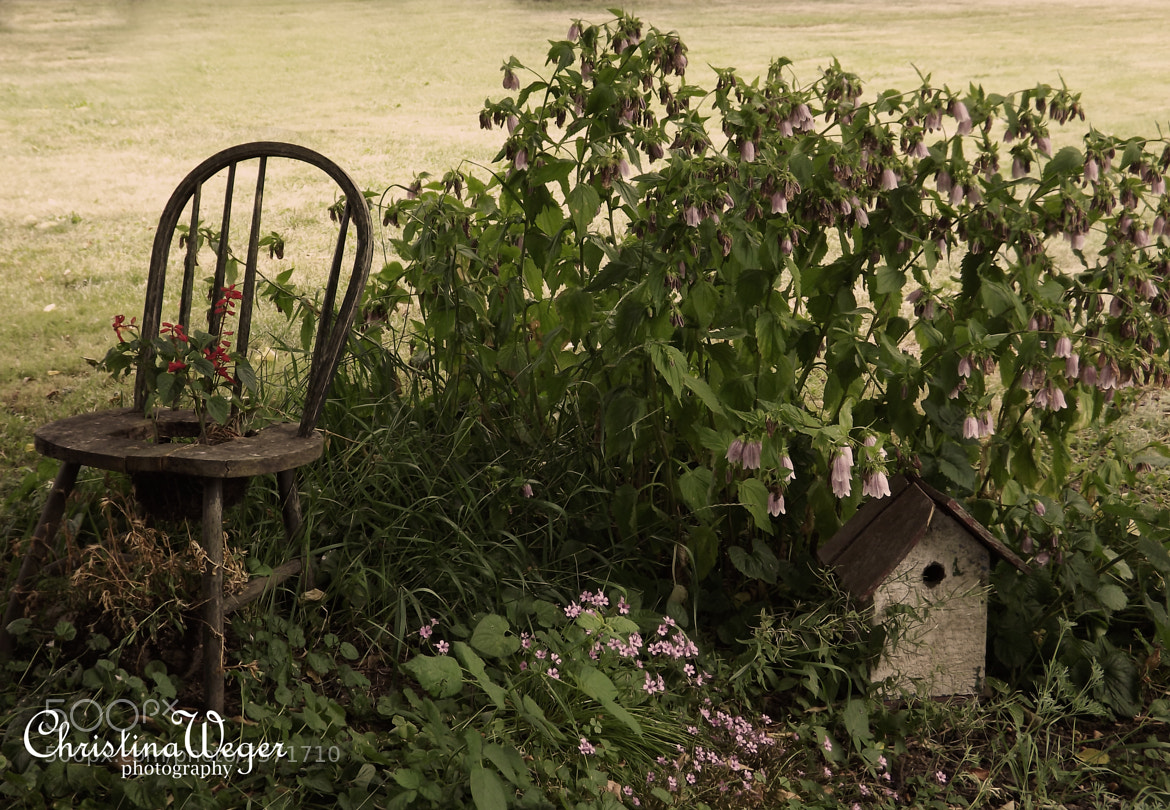Photograph Birdhouse & Chair by Christina Weger on 500px