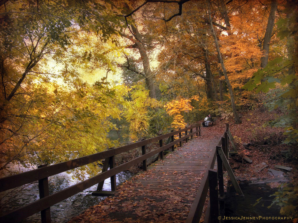 Photograph The Crossing by Jessica Jenney on 500px