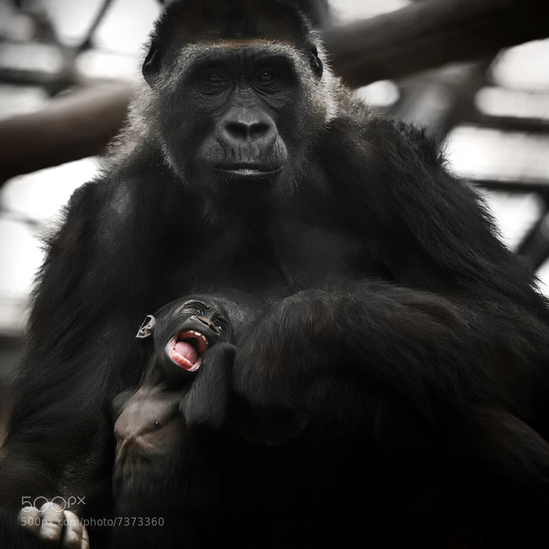 Photograph Mother and child by Cath Schneider on 500px