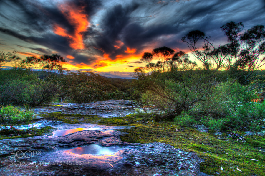 Photograph Sunset that make you feel warm in Winter by Justine King on 500px
