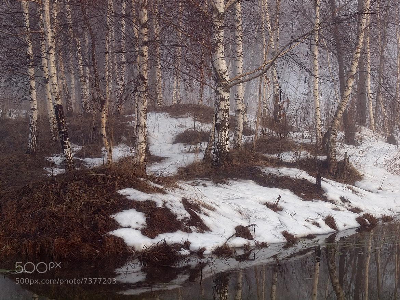 Photograph Island of winter by Vladimir Perepechaev on 500px