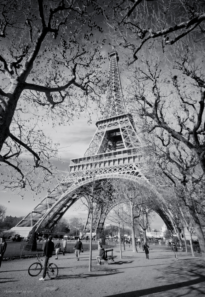 Photograph Eiffel tower (3) by Stacy Bamon on 500px