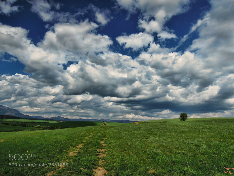 Photograph Spring sunday by Milan Cernak on 500px