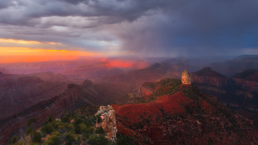 Photograph Red Rain by Paul Rojas on 500px