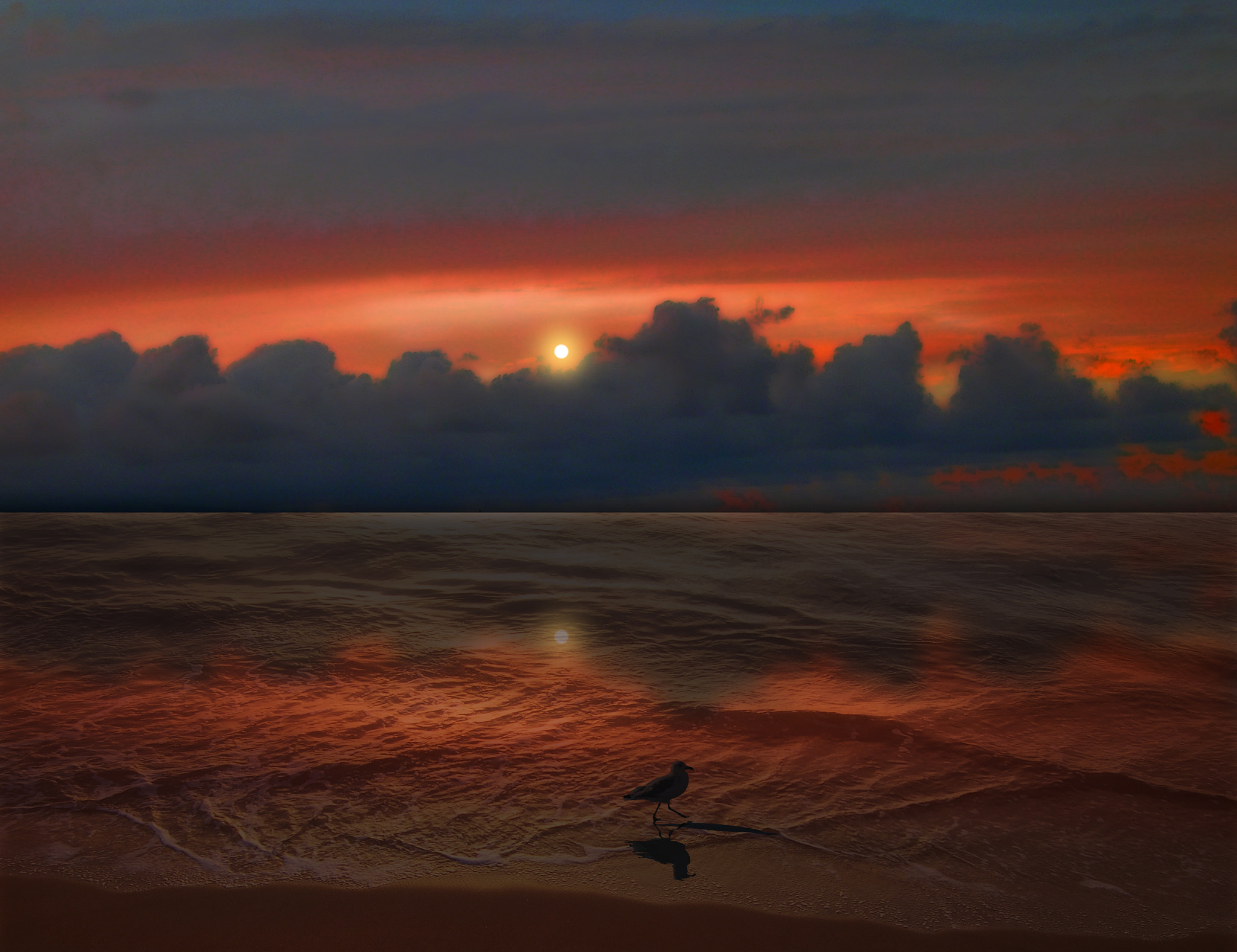 Photograph 2236 by peter holme iii on 500px