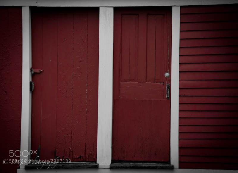 Day 7 - Red Door