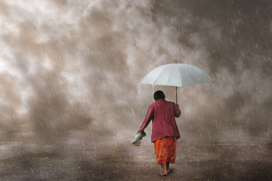 Photograph When the Rain by 3 Joko on 500px
