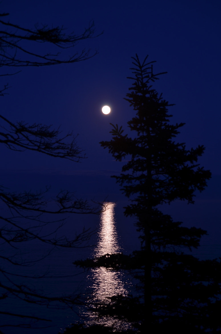 Photograph Super Moon Rise  by Sean Beaulieu on 500px
