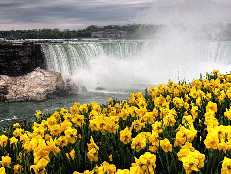 Daffie Falls by Grant MacDonald on 500px.com