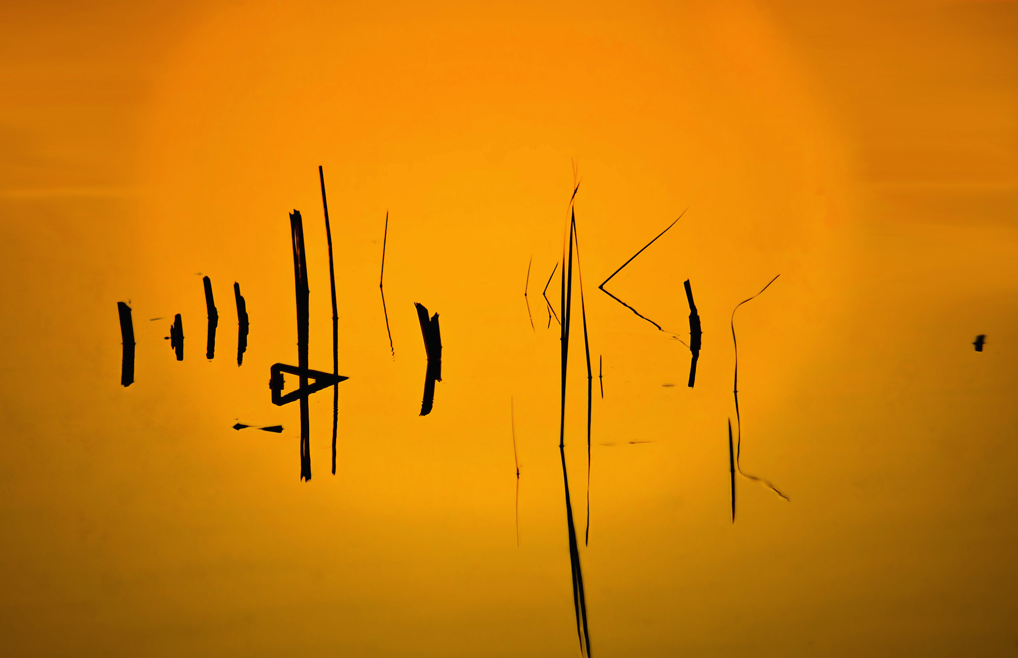 Photograph ...geometry in the sunset by SIMINA COSTESCU on 500px