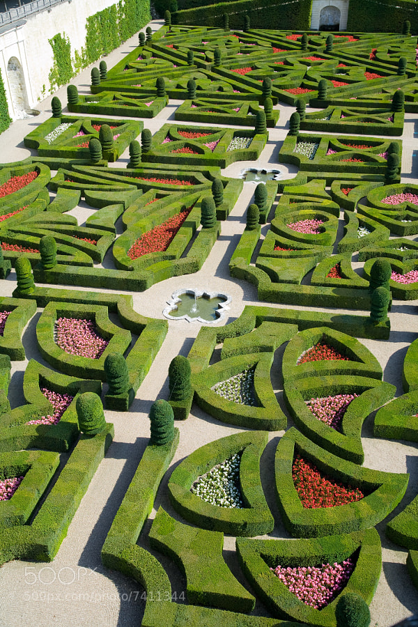Photograph Chateau de Villandry - gardens by CpC on 500px