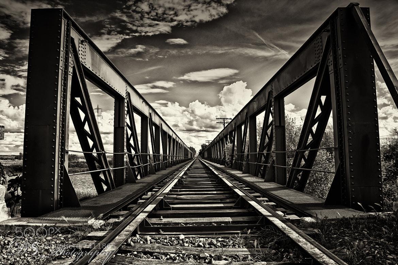 Photograph Long Way by Daniel Sousa Malandra on 500px