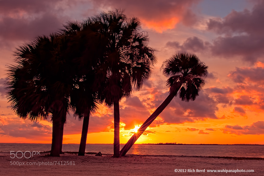 Photograph Sanibel Island Sunset by Richard Ikerd on 500px