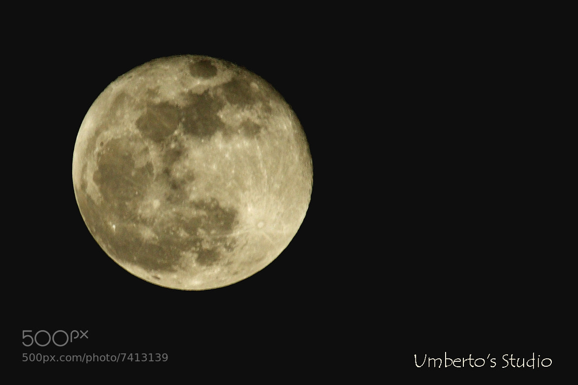 Photograph Perigee Moon over Tampa Bay by Humberto Reyno on 500px