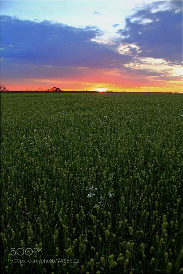 Photograph Endless Horizon by Everett Houser on 500px