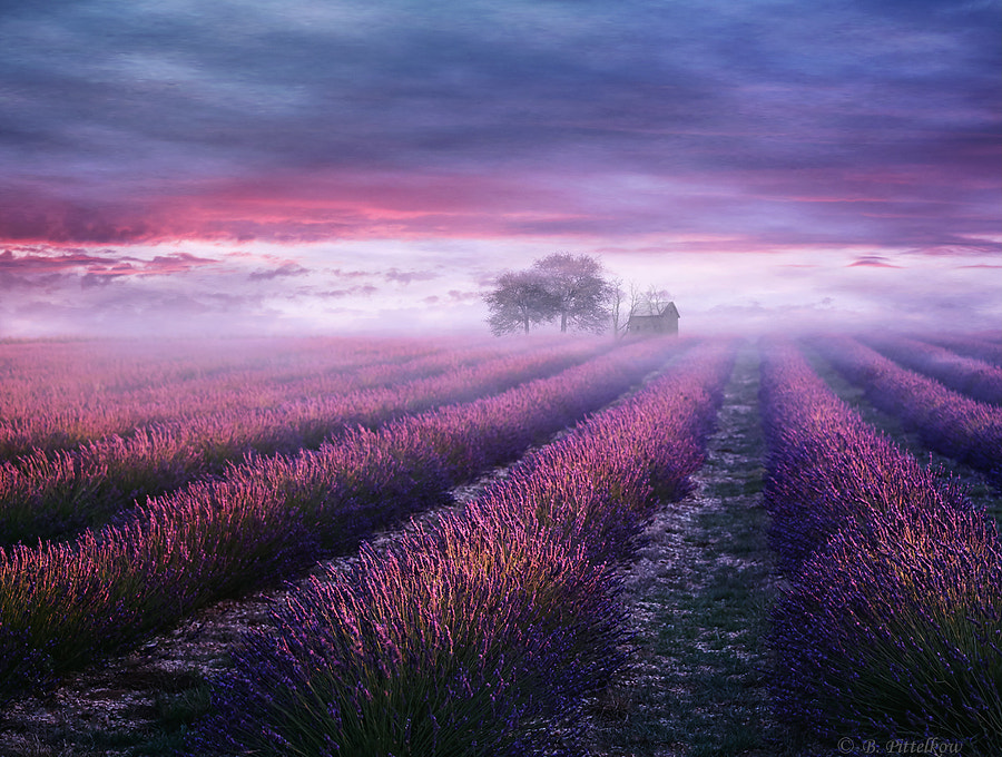 One Day in the South by Birgit Pittelkow on 500px.com
