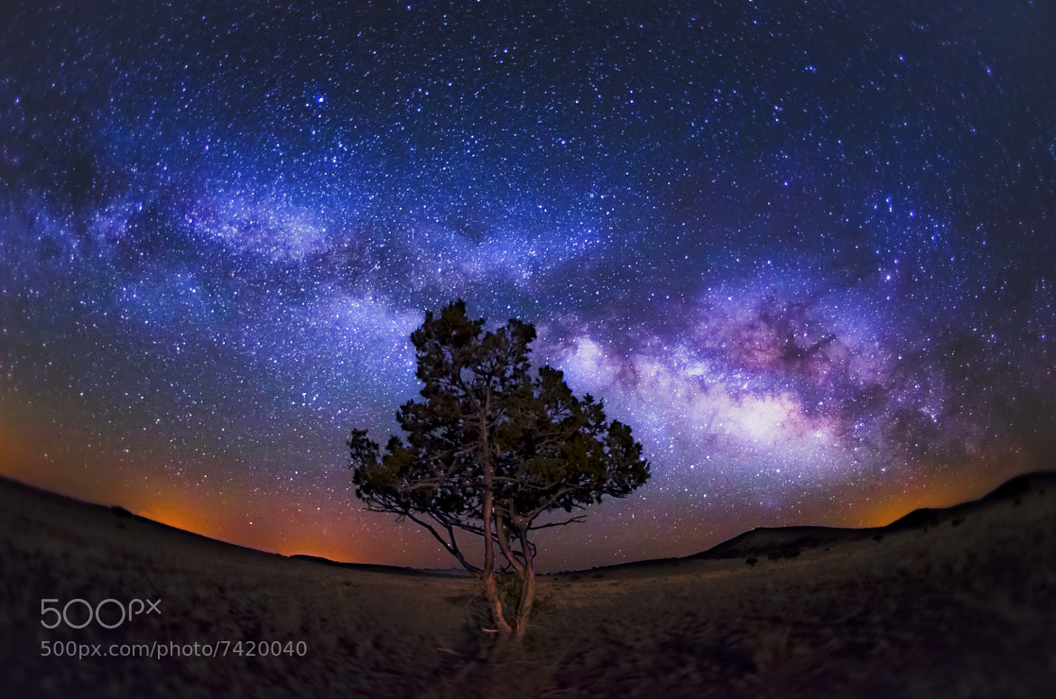 Photograph Milky Way on a Quiet Night by Knate Myers on 500px