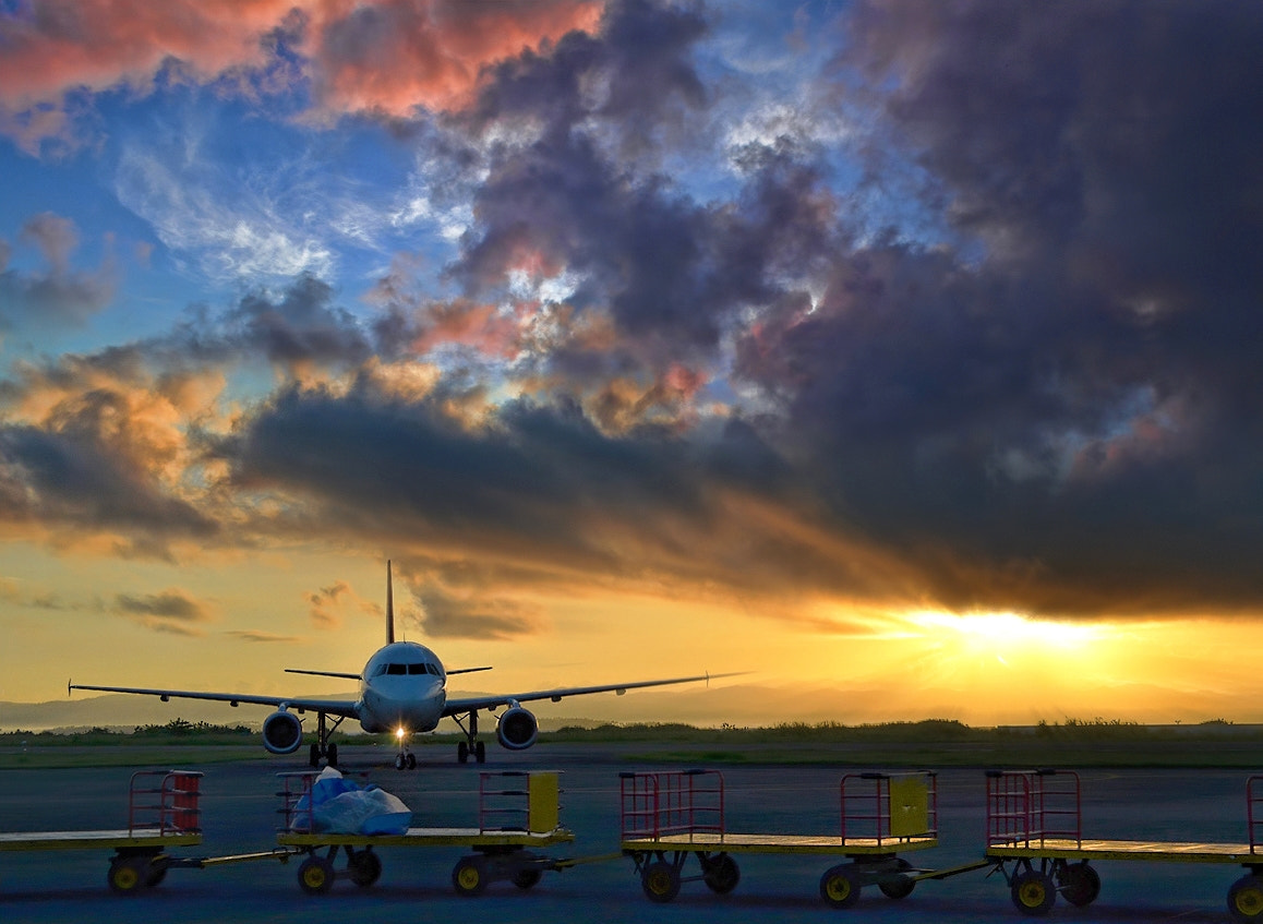 Photograph The morning flight by Vey Telmo on 500px