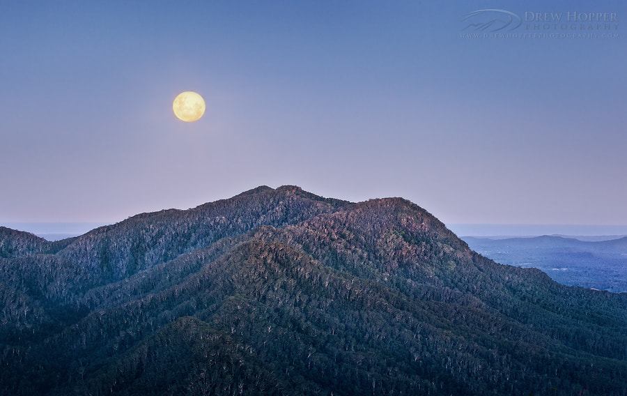 Photograph Dorrigo Supermoon by Drew Hopper on 500px
