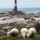 Lighthouse near Egersund, Norway