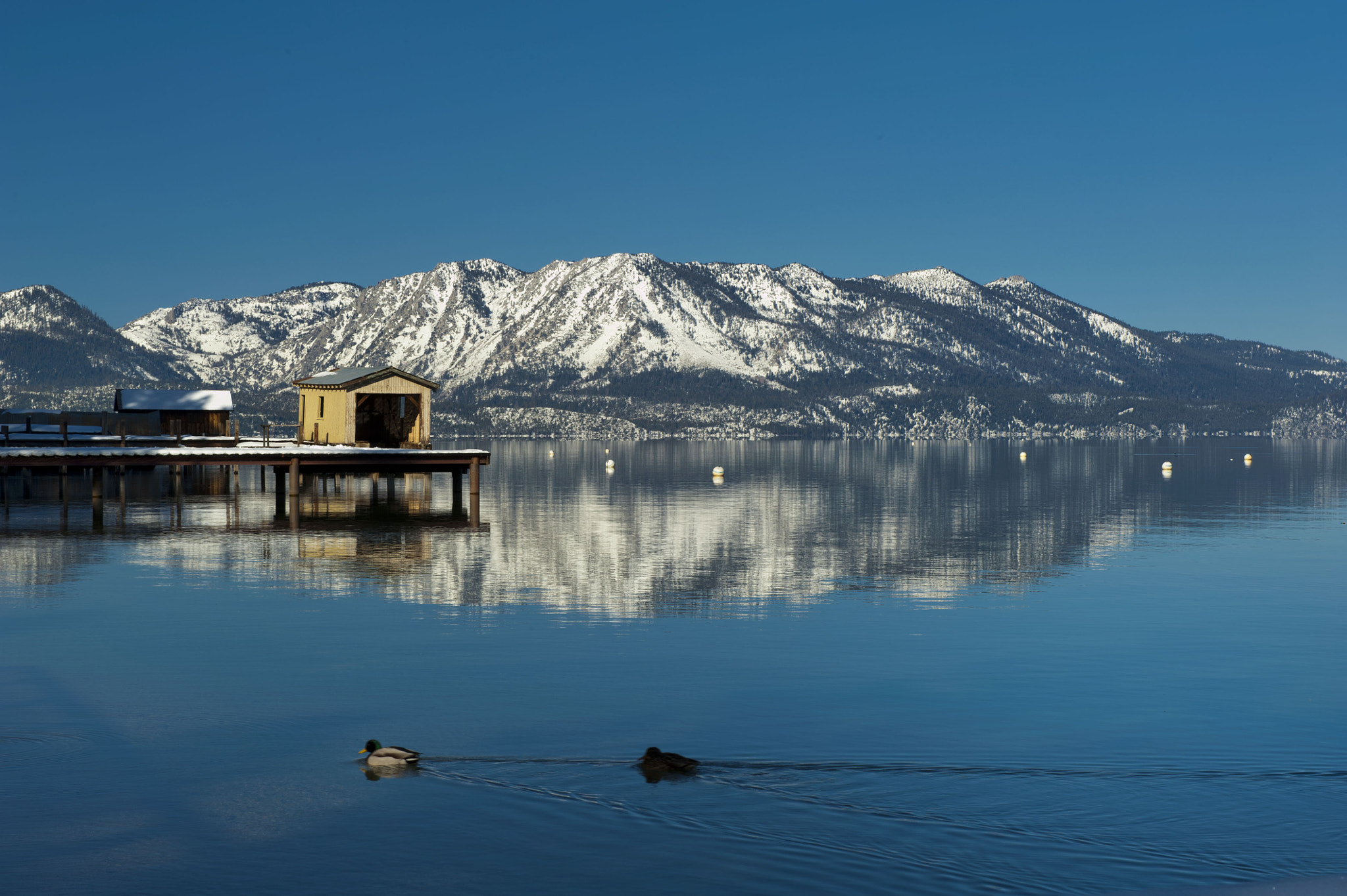 Photograph Lake Tahoe by Jaypee Verdaguer on 500px