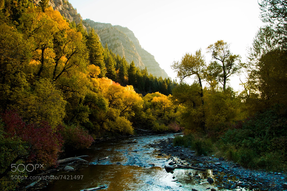 Photograph Provo River by Wayne Dahlberg on 500px