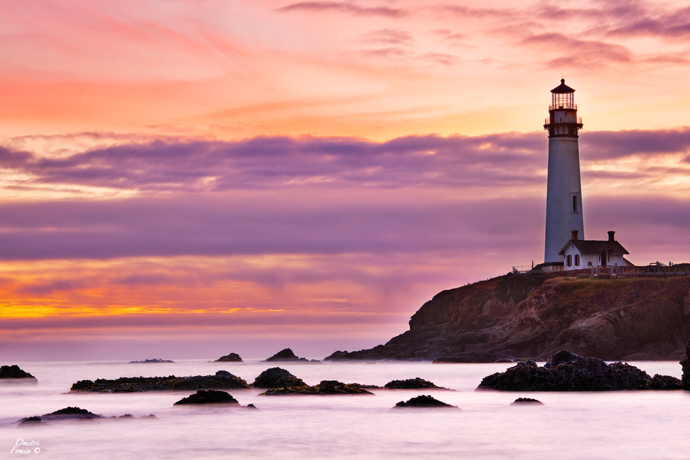 Photograph Without a light - Pigeon point Lighthouse by Dmitri Fomin on 500px