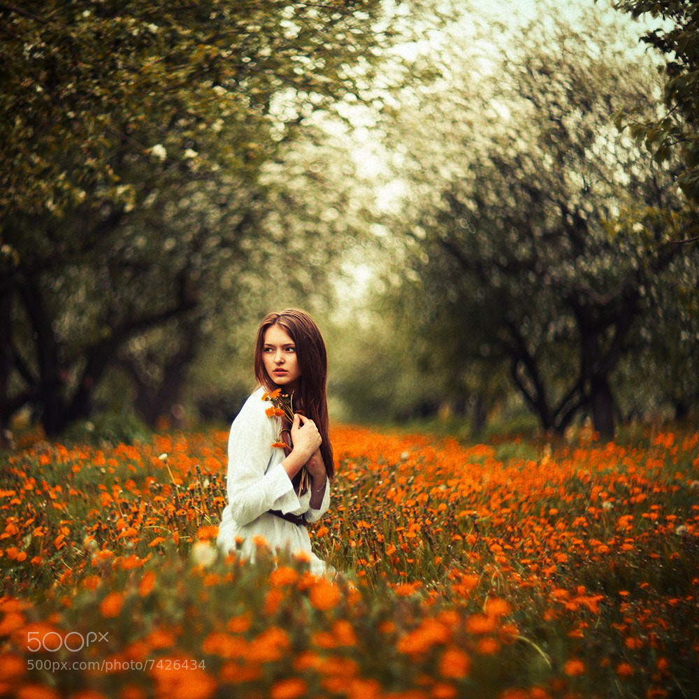 Photograph Untitled by Alexandr Shajunov on 500px