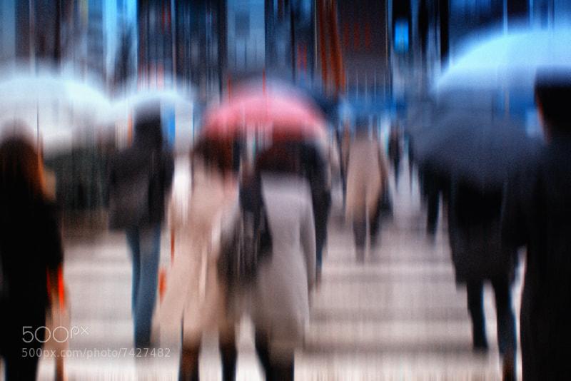 Photograph rainy day by Vladimir Perfanov on 500px