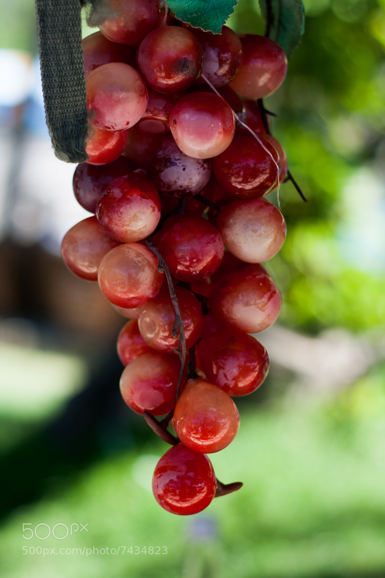 Photograph Fake grapes by Phuc Truong on 500px