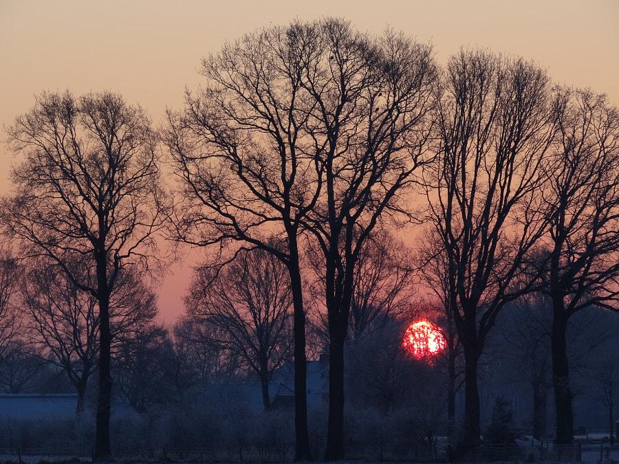 Sun rise @ Hengelo (gld)