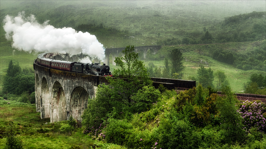 Photograph Watching the Steam Train in the Pouring Rain by Ann  on 500px