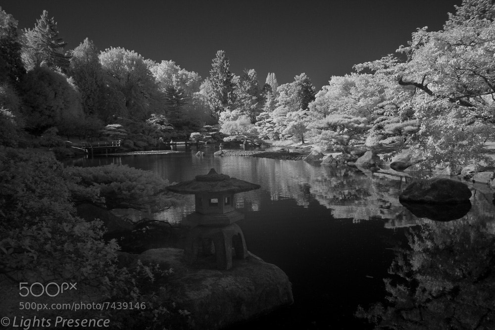 Photograph Arboretum by Rick Schump on 500px