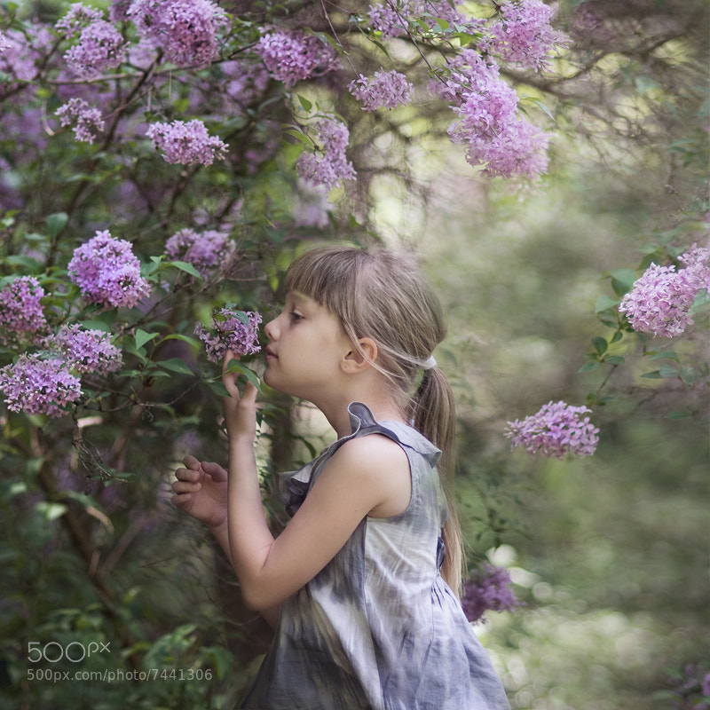 Photograph smells like spring by Magdalena Berny on 500px