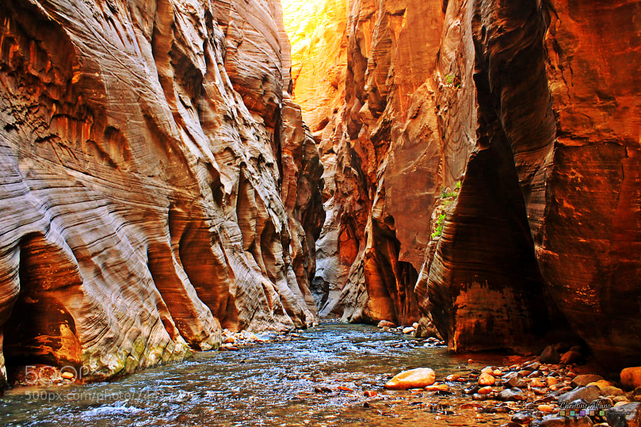 Photograph Canyon Walls by Christine Alfano on 500px
