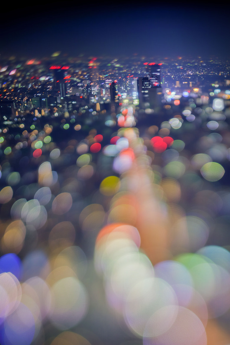 Photograph to the lights - 光へ by takashi kitajima on 500px