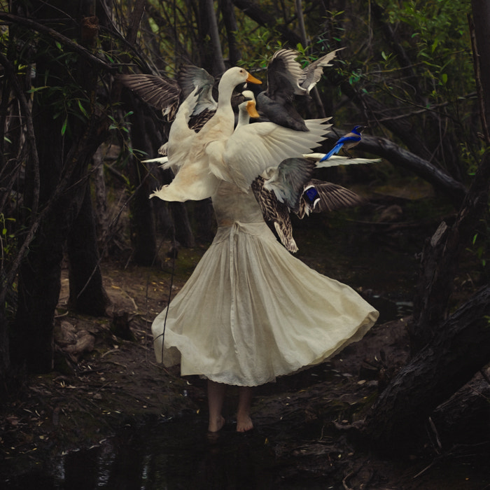 Photograph The Creation of Mother Goose by Brooke Shaden on 500px