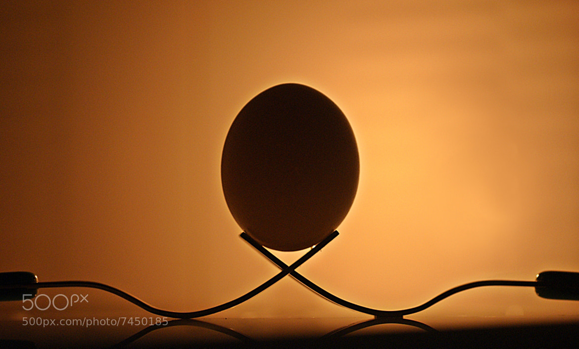 Photograph Forks and Egg.......... by Aroon Kalandy on 500px