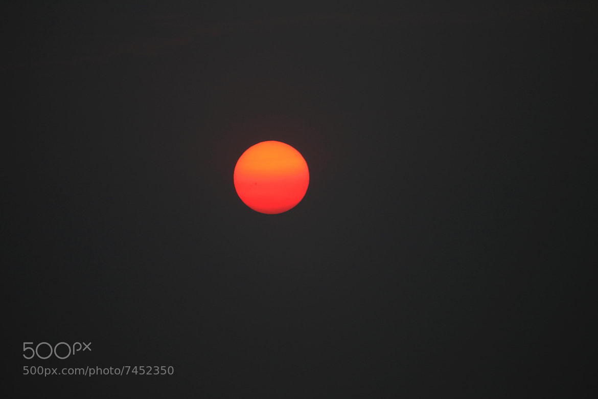 Photograph Sun, only sun !!! by Alfredo Garciaferro Macchia on 500px