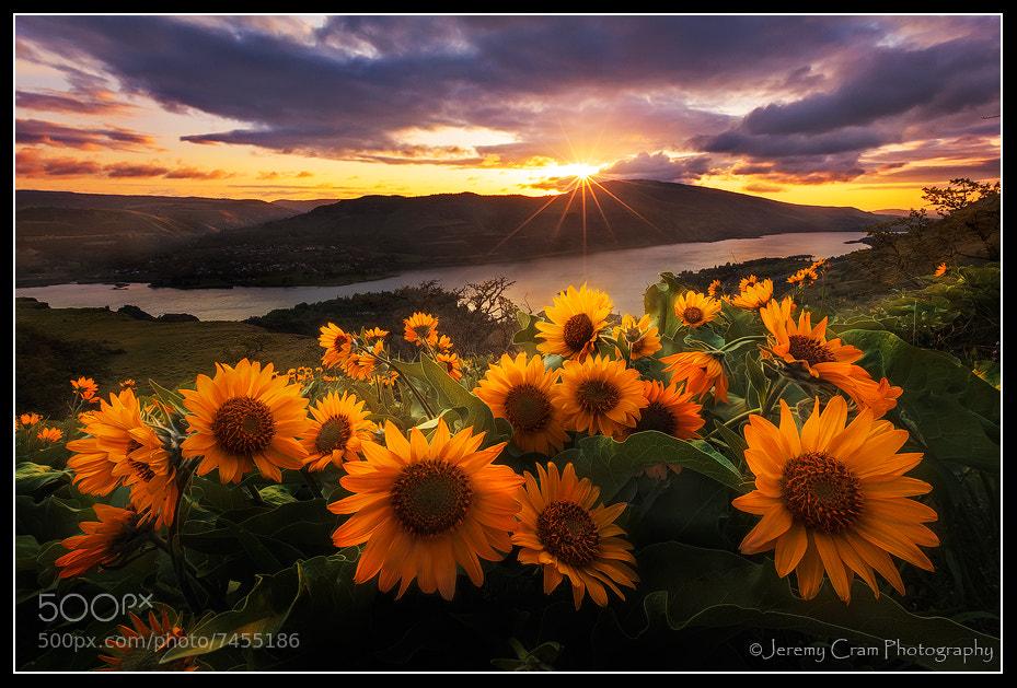 Photograph Rowena Morning... by Jeremy Cram on 500px
