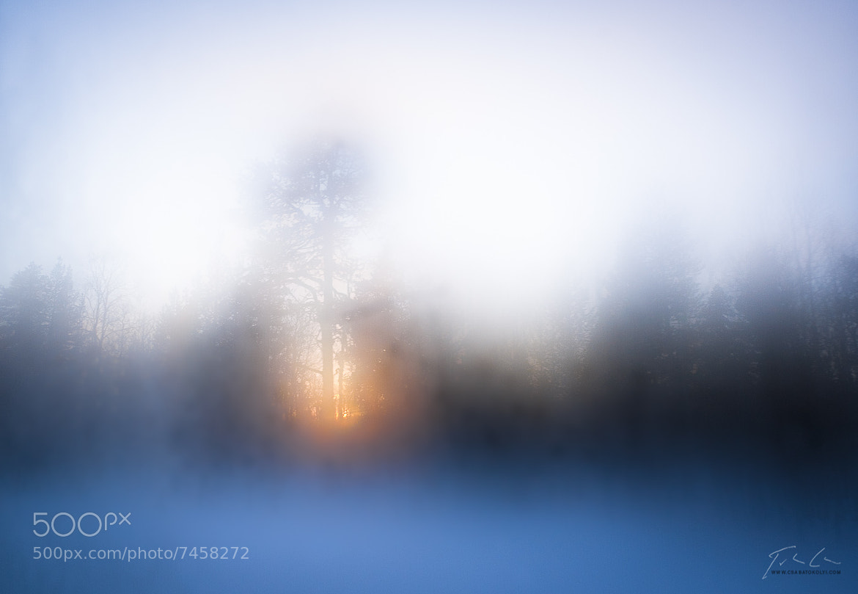Photograph Enroute to Inari by Csaba Tökölyi on 500px