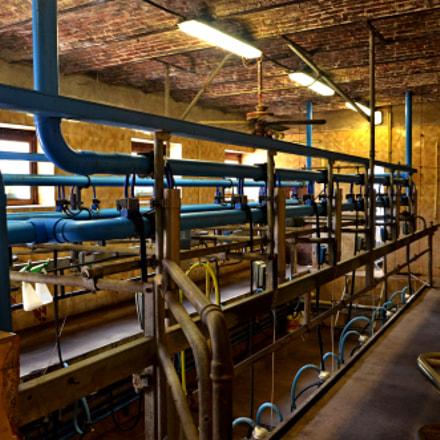 Milking room