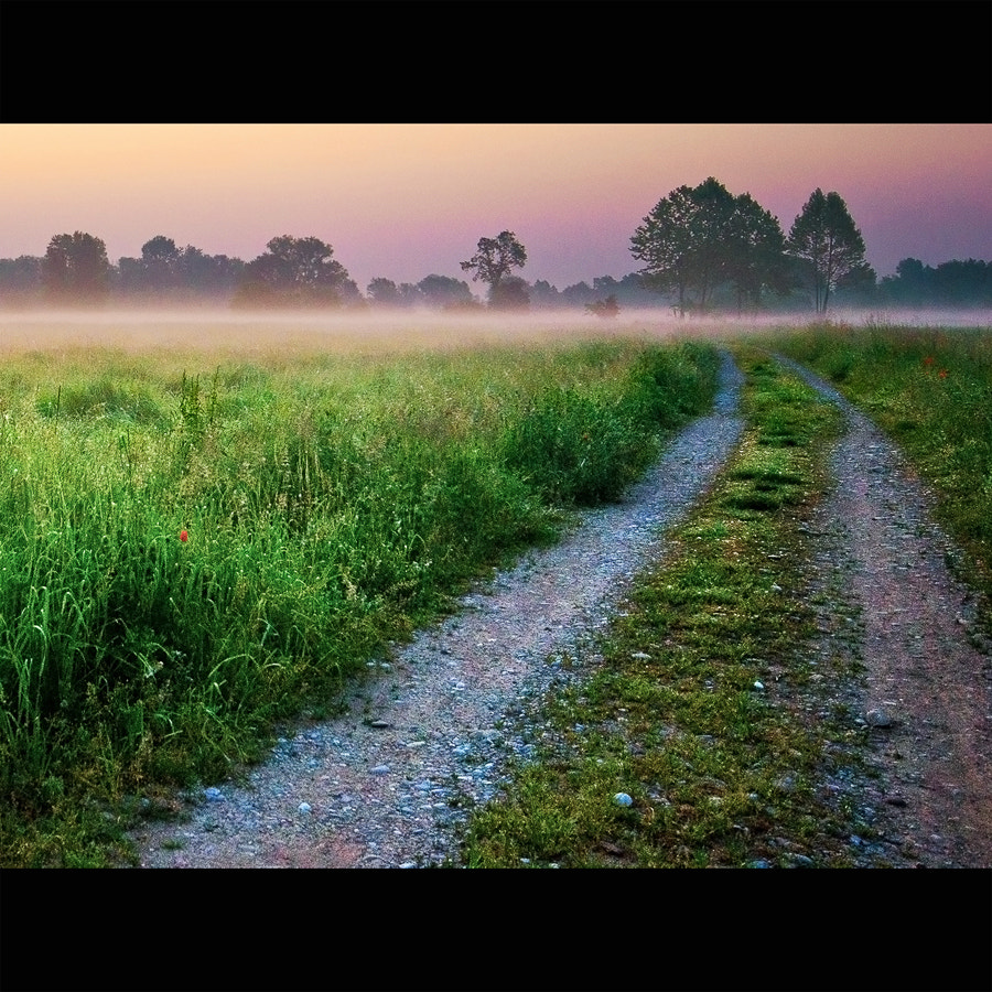 Photograph Who can say where the road goes,  Where the day flows, only time   by Greta Spinoni on 500px