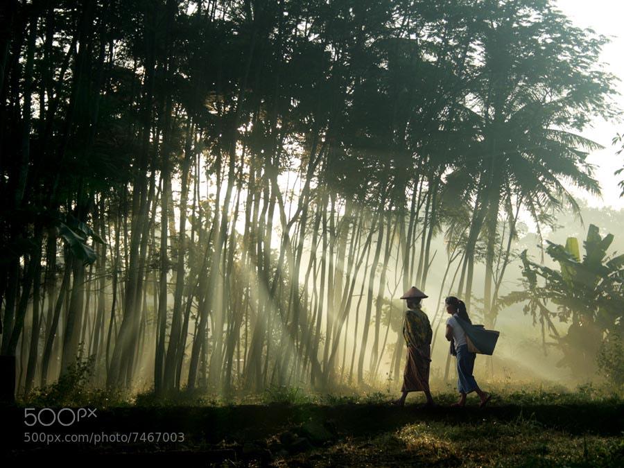 Photograph morning spirit by budi 'ccline' on 500px